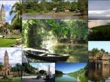 Поездка в джунгли Амазонки
